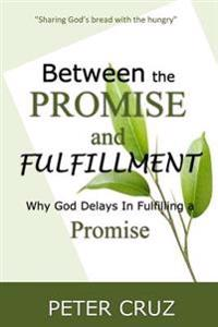 Between the Promise and Fulfillment: Why God Delays in Fullfilling a Promise