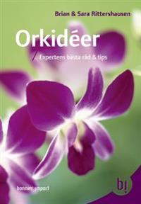 Orkidéer : expertens bästa råd och tips
