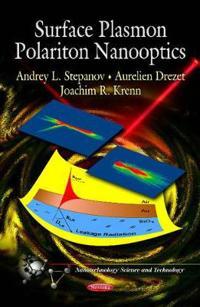 Surface Plasmon Polariton Nanooptics