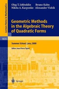 Geometric Methods in the Algebraic Theory of Quadratic Forms