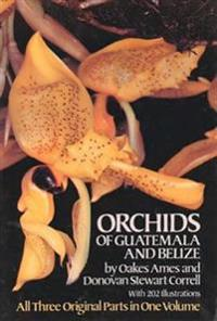 The Orchids of Guatemala and Belize