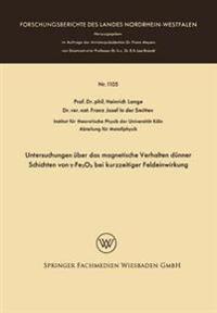 Untersuchungen Über Das Magnetische Verhalten Dünner Schichten Von -fe2o3 Bei Kurzzeitiger Feldeinwirkung