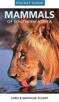 Pocket guide mammals of Southern Africa