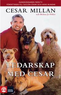 Ledarskap med Cesar