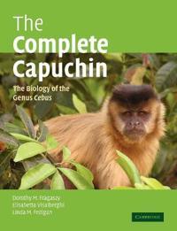 Complete Capuchin