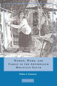 Women, Work and Family in the Antebellum Mountain South