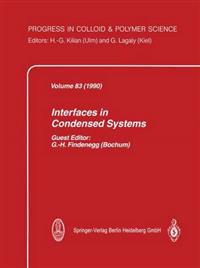 Interfaces in Condensed Systems