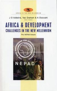 Africa And Development Challenges In The New Millennium