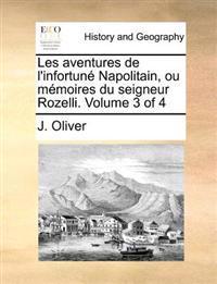 Les Aventures de L'Infortune Napolitain, Ou Memoires Du Seigneur Rozelli. Volume 3 of 4