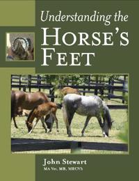 Understanding the Horse's Feet
