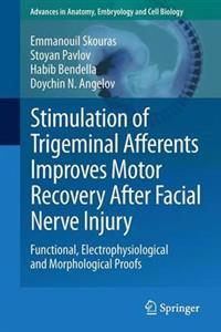 Stimulation of Trigeminal Afferents Improves Motor Recovery After Facial Nerve Injury