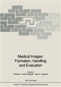 Medical Images: Formation, Handling and Evaluation