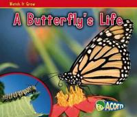 Butterflys life