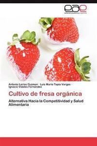 Cultivo de Fresa Organica