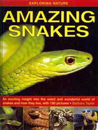 Exploring Nature: Amazing Snakes: An Exciting Insight Into the Weird and Wonderful World of Snakes and How They Live, with 190 Pictures