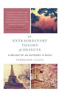 Extraordinary theory of objects - a memoir of an outsider in paris
