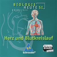 Biologie heute entdecken. Lernsoftware. Blut und Blutkreislauf. Sekundarstufe 1. CD-ROM für Windows ab 98