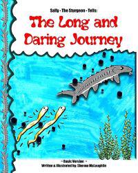 The Long and Daring Journey: Basic Version