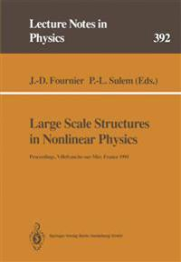 Large Scale Structures in Nonlinear Physics
