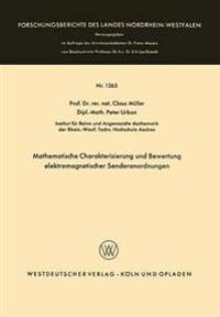 Mathematische Charakterisierung Und Bewertung Elektromagnetischer Senderanordnungen