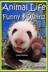 Animal Life Funny & Weird Land Mammals: Learn with Amazing Photos and Fun Facts about Animals and Land Mammals