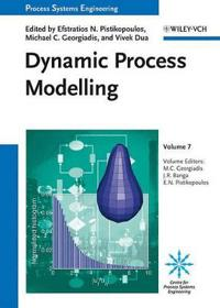 Dynamic Process Modeling