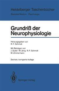 Grundriss der Neurophysiologie