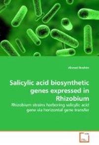 Salicylic Acid Biosynthetic Genes Expressed in Rhizobium