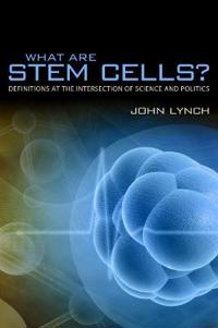 What Are Stem Cells?