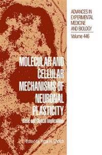 Molecular and Cellular Mechanisms of Neuronal Plasticity