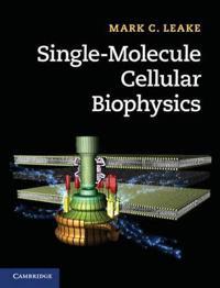Single-Molecule Cellular Biophysics
