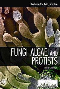Fungi, Algae, and Protists
