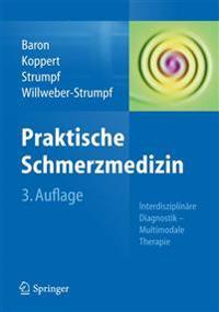 Praktische Schmerzmedizin: Interdisziplinäre Diagnostik - Multimodale Therapie