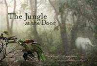 The Jungle at the Door: A Glimpse of Wild India