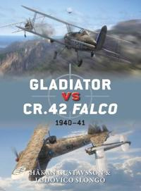 Gladiator vs CR.42 Falco