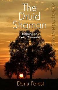 The Druid Shaman: Exploring the Celtic Otherworld