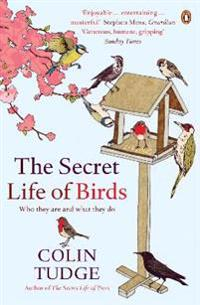 Secret life of birds - who they are and what they do