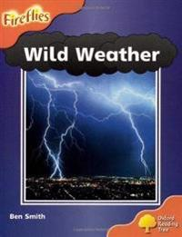 Oxford Reading Tree: Level 6: Wild Weather