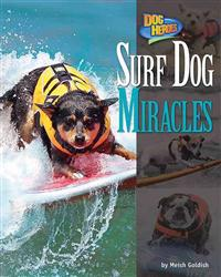 Surf Dog Miracles