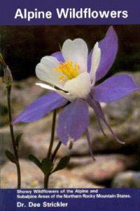 Alpine Wildflowers