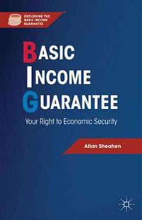 Basic Income Guarantee