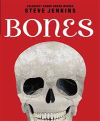Bones: Skeletons and How They Work: Skeletons and How They Work