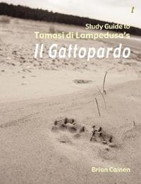 Study Guide to Il Gattopardo