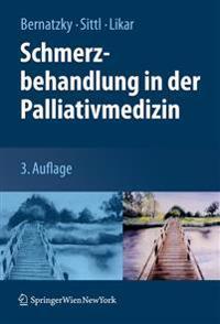 Schmerzbehandlung in Der Palliativmedizin