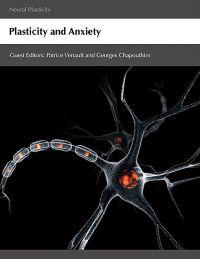 Plasticity and Anxiety