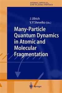 Many-Particle Quantum Dynamics in Atomic and Molecular Fragmentation