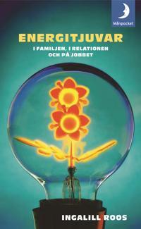 Energitjuvar : i familjen, i relationen och på jobbet
