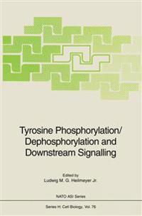 Tyrosine Phosphorylation/Dephosphorylation and Downstream Signalling