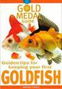Golden Tips for Keeping Your First Goldfish