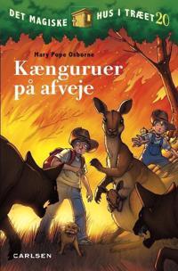 Kænguruer på afveje